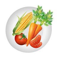 desenho vetorial de cenoura, milho e tomate vetor