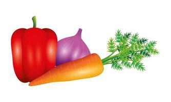 Desenho vetorial de vegetais, alho, pimenta e cenoura vetor