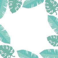 moldura de folhas tropicais em cor pastel em fundo branco vetor