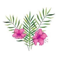 flores de hibisco rosa com ramos e folhas, natureza tropical, primavera verão botânica vetor