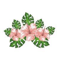 flores de hibisco com folhas exóticas, natureza tropical, botânica primavera verão vetor