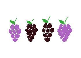 ilustração isolada do vetor do molde do ícone da uva