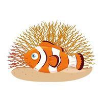 vida subaquática do mar, peixe anêmona com coral, peixe-palhaço no fundo branco vetor