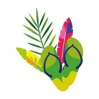 par de chinelos com penas exóticas e folhas tropicais vetor