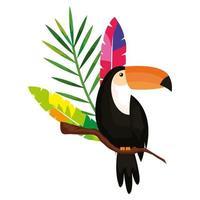 tucano com penas exóticas e folha tropical vetor
