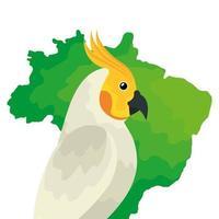 mapa do brasil com ícone de pássaro papagaio isolado vetor
