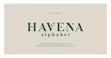 elegante letras do alfabeto serif fonte e número vetor