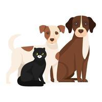 cães fofos com ícones isolados de gato preto vetor