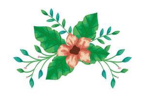 flor fofa com ramos e folhas