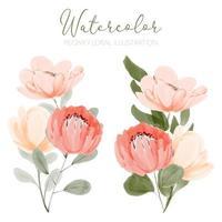 ilustração de arranjo floral aquarela linda peônia vetor