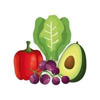 vegetais frescos e uvas frutas vetor