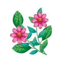 flores bonitas rosa com ícone isolado de ramos e folhas vetor