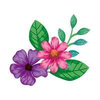 flores fofas de cor rosa e roxa com folhas