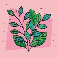 conjunto de ramos com folhas naturais vetor