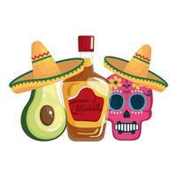 Abacate e caveira com tequila mexicana isolada com desenho vetorial de chapéus vetor
