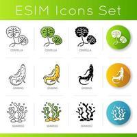 conjunto de ícones de ingredientes cosméticos. folhas de centela. raiz de ginseng. componente de algas marinhas em produtos para a pele. vetor