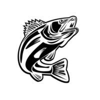 peixe barramundi pulando retro preto e branco vetor