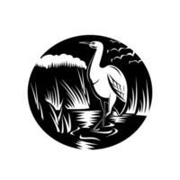 garça ou garça em círculo de pântano xilogravura em preto e branco vetor