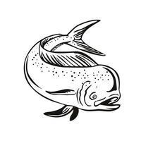 dorado mahi-mahi ou golfinho comum pulando em preto e branco retrô