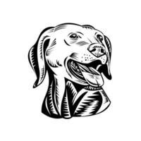 cabeça de um cão labrador retriever com arma xilogravura retrô preto e branco vetor