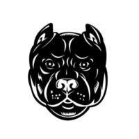 cabeça de pit bull ou pitbull vista frontal xilogravura retrô preto e branco