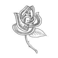 flor rosa com dinheiro ou nota de cem dólares impressa nas pétalas desenhada em preto e branco