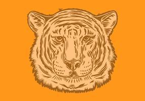 retrato cabeça tigre vetor