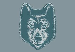 Retrato de cabeça de lobo vetor