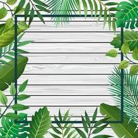 fundo do quadro tropical.