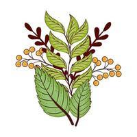 estação do outono, folhas verdes e ramos planta natureza vetor