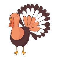 ícone de personagem animal peru de ação de graças vetor
