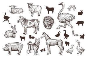 animais de fazenda vintage com esboço de linha fina e silhuetas. vetor