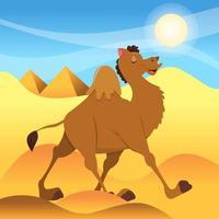 camelo de desenho animado caminhando no deserto do Saara vetor
