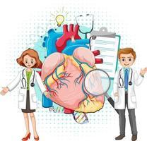 médico e coração humano em fundo branco vetor