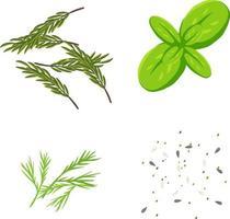 conjunto de ervas para decoração de comida vetor