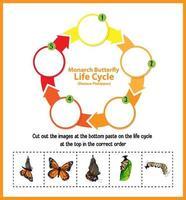 diagrama mostrando o ciclo de vida da borboleta vetor