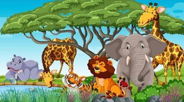 animais selvagens na selva vetor