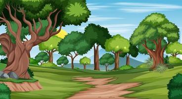 trilha na cena da paisagem da floresta vetor