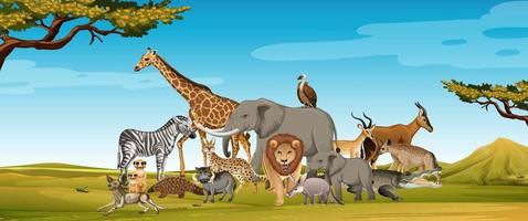 grupo de animal africano selvagem na cena da floresta vetor