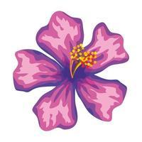 bela flor exótica ícone tropical vetor