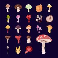 conjunto de ícones de fungo e cogumelo