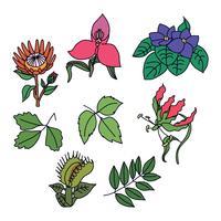 Flores Tóxicas Coloridas