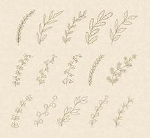 elementos decorativos florais desenhados à mão