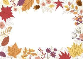 desenho de folhas de outono em fundo branco