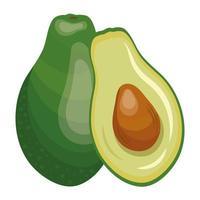 ícone de alimentação saudável de vegetais frescos de abacate vetor