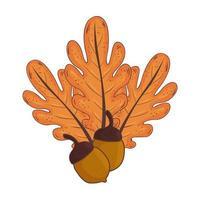 Outono folhas e sementes nozes planta natureza vetor