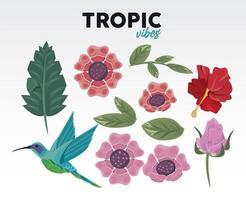 citação de vibrações tropicais com flores e pássaros vetor