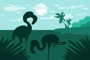 em pé no flamingo aquático