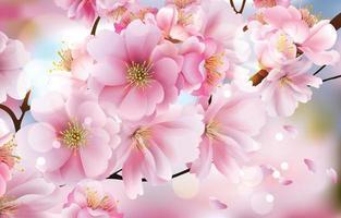 lindo conceito de flor de cerejeira vetor