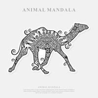camelo mandala. elementos decorativos vintage. padrão oriental, ilustração vetorial. vetor